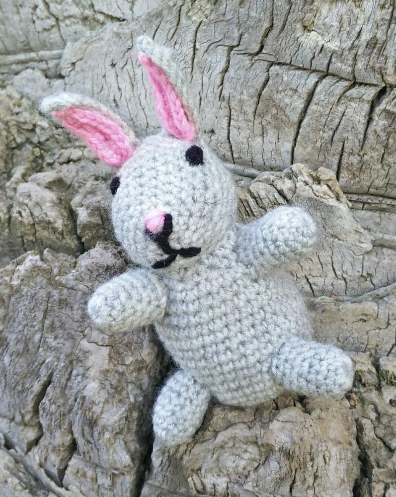 Grey Little Bunny